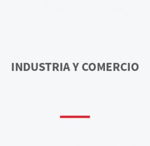 walter-bridge-clientes-industria-y-comercio-04